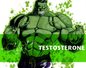 broccoli does not increase testosterone e1441398673882 300x238 Broccoli Does Not Increase Testosterone Levels, Stop Saying It